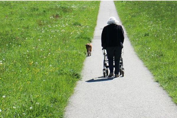 Elderly walking outside on a rollator