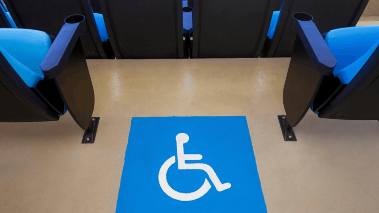 What is a Wheelchair Companion Seat?